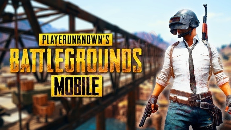 PUBG Mobile Ban : Five Incidents in India