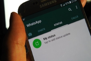 How To Hide Your WhatsApp Story From Select Contacts