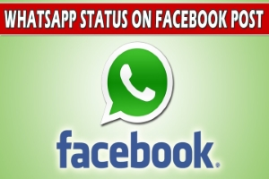 WhatsApps New Feature Lets You Share Status To Facebook