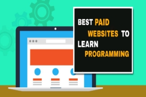 Top 5 Best Paid Websites To Learn Programming
