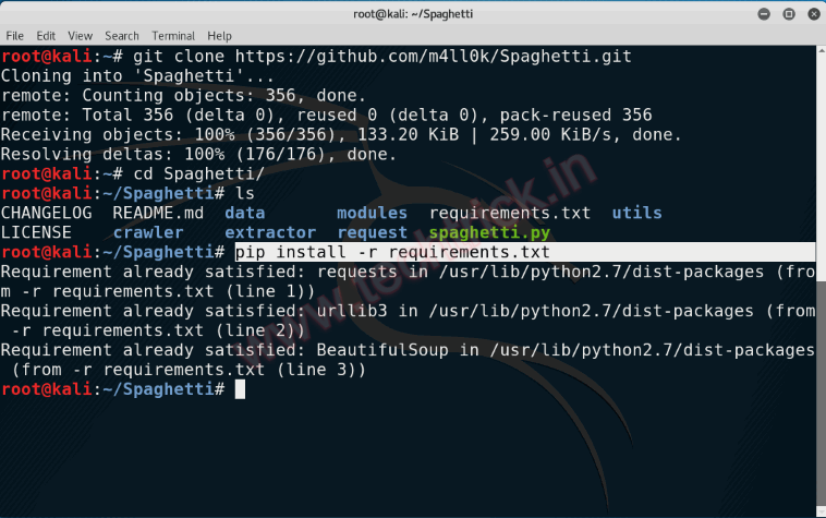 Web Application Security Scanner in Kali Linux - Spaghetti